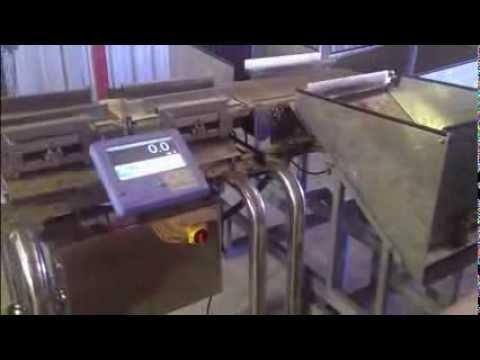 Checkweighing Simplified - Potato Grading & Weighing Solution